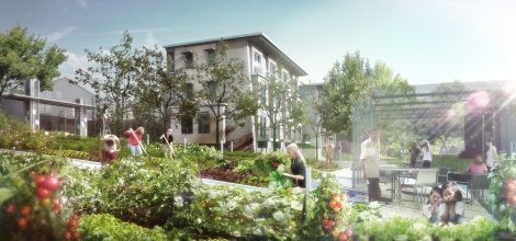Community gardens and gathering space link to a sloping path through the site. Design by Studio G Architects ©