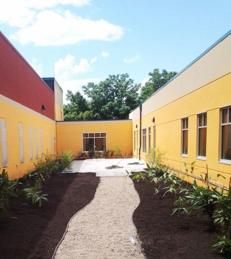 bamboo courtyard